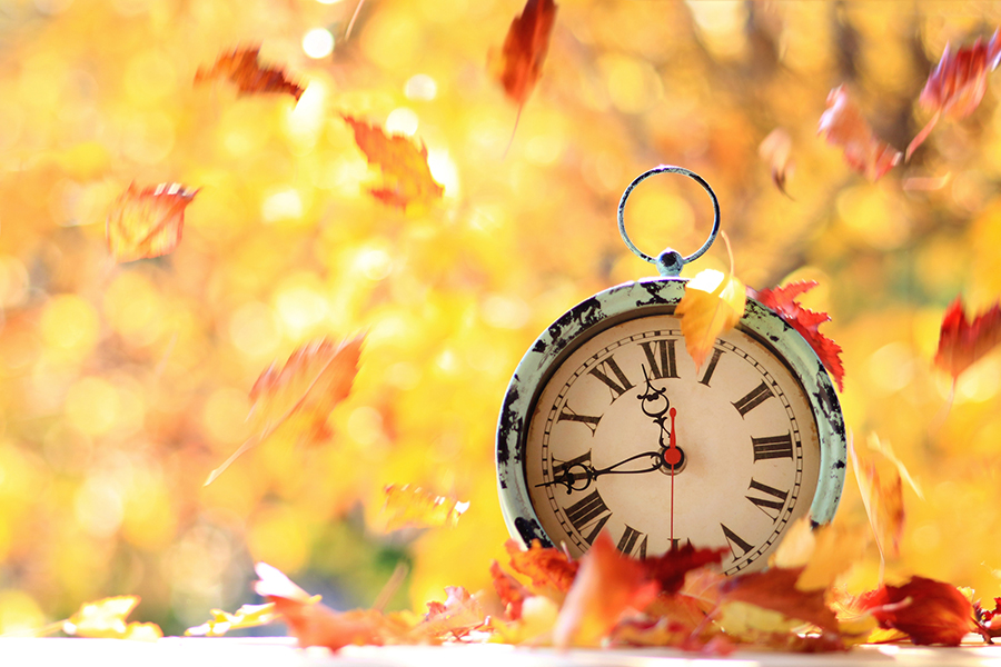 Clock on Leaves in Fall